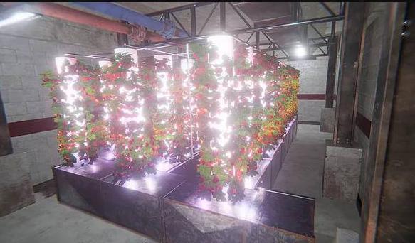 В ЮУрГАУ разрабатывают умные домашние фермы Troysun